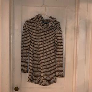 Thick Turtleneck Sweater Dress (NWOT)